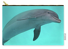 Dolphin Carry-all Pouch by Sandy Keeton
