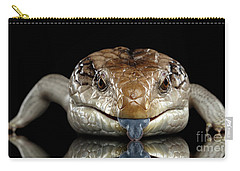 Eastern Blue-tongued Skink, Tiliqua Scincoides, Isolated On Black Background Carry-all Pouch by Sergey Taran