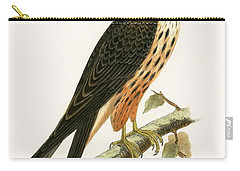 Falco Eleonorae Carry-all Pouch by English School
