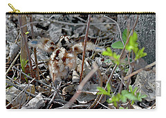 First Steps Carry-all Pouch by Asbed Iskedjian
