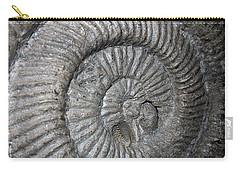Fossil Spiral  Carry-all Pouch by LeeAnn McLaneGoetz McLaneGoetzStudioLLCcom