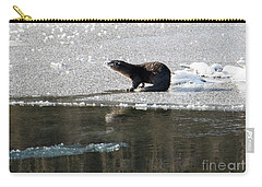 Frosty River Otter  Carry-all Pouch by Mike Dawson