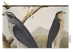 Goshawk And Stanley Hawk Carry-all Pouch by John James Audubon