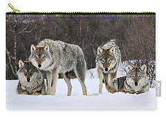 Gray Wolf Canis Lupus Group, Norway Carry-all Pouch by Jasper Doest