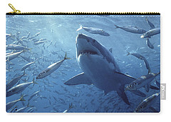 Great White Shark Carcharodon Carry-all Pouch by Mike Parry