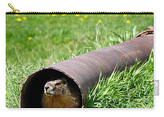 Groundhog In A Pipe Carry-all Pouch by Will Borden