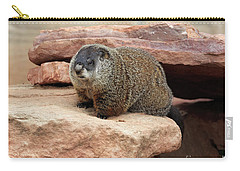 Groundhog Carry-all Pouch by Louise Heusinkveld