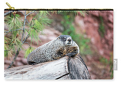 Groundhog On A Log Carry-all Pouch by Jess Kraft