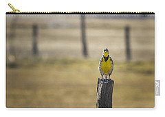 Have Audience Will Sing Carry-all Pouch by Belinda Greb