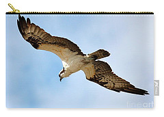 Hunter Osprey Carry-all Pouch by Carol Groenen