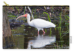 Ibis Drink Carry-all Pouch by Mike Dawson