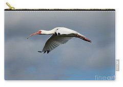 Ibis In Flight Carry-all Pouch by Carol Groenen