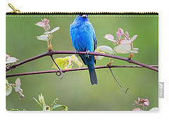Indigo Bunting Perched Square Carry-all Pouch by Bill Wakeley