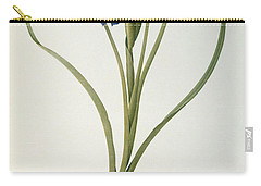 Iris Xyphioides Carry-all Pouch by Pierre Joseph Redoute