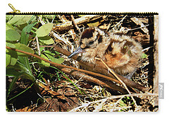 It's A Baby Woodcock Carry-all Pouch by Asbed Iskedjian
