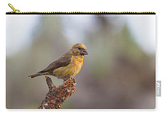 Juvenile Male Red Crossbill Carry-all Pouch by Doug Lloyd