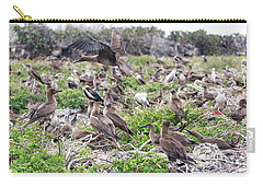 Juveniles Red Footed Boobies Carry-all Pouch by Jess Kraft