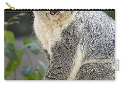 Koala Female Portrait Carry-all Pouch by Jamie Pham