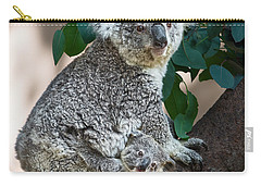 Koala Joey And Mom Carry-all Pouch by Jamie Pham