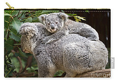Koala Joey Piggy Back Carry-all Pouch by Jamie Pham
