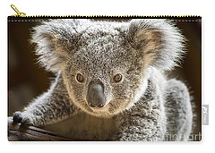 Koala Kid Carry-all Pouch by Jamie Pham