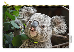 Koala Male Portrait Carry-all Pouch by Jamie Pham