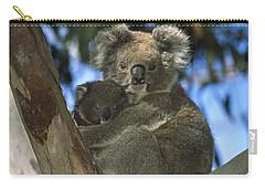 Koala Phascolarctos Cinereus Mother Carry-all Pouch by Konrad Wothe