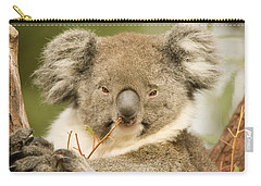 Koala Snack Carry-all Pouch by Mike  Dawson