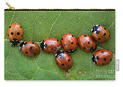 Lady Bugs  Carry-all Pouch by Bob Christopher