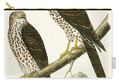 Levant Sparrow Hawk Carry-all Pouch by English School