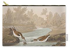 Little Sandpiper Carry-all Pouch by John James Audubon