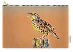 Little Songbird Carry-all Pouch by HH Photography of Florida