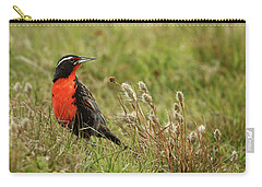 Long-tailed Meadowlark Carry-all Pouch by Bruce J Robinson