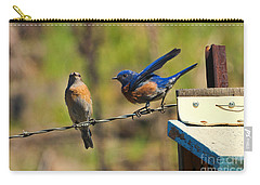 Look My Way Carry-all Pouch by Mike Dawson