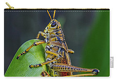 Lubber Grasshopper Carry-all Pouch by Richard Rizzo