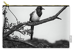 Magpie  Carry-all Pouch by Philip Openshaw