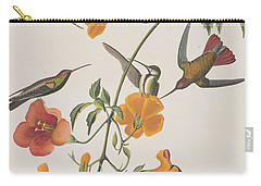 Mango Humming Bird Carry-all Pouch by John James Audubon