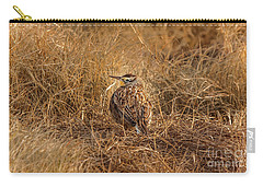 Meadowlark Hiding In Grass Carry-all Pouch by Robert Frederick