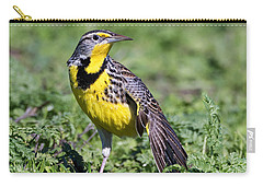 Meadowlark On The Runway Carry-all Pouch by Kathleen Bishop