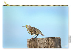 Meadowlark Roost Carry-all Pouch by Mike Dawson
