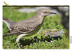 Mockingbird Foraging 1 Carry-all Pouch by Linda Brody