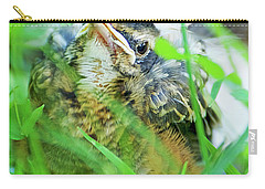 Carry-all Pouch featuring the photograph Nestling, Juvenile Male American Robin by A Gurmankin