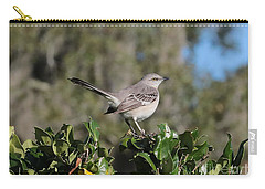 Northern Mockingbird Carry-all Pouch by Carol Groenen