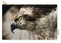 Osprey Carry-all Pouch by Adam Romanowicz