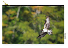 Osprey Carry-all Pouch by Bill Wakeley