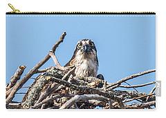 Osprey Eyes Carry-all Pouch by Paul Freidlund