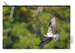 Osprey Square Carry-all Pouch by Bill Wakeley