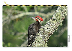 Pileated Perch Carry-all Pouch by Al Powell Photography USA