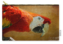 Pretty Boy Carry-all Pouch by Lois Bryan