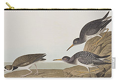 Purple Sandpiper Carry-all Pouch by John James Audubon
